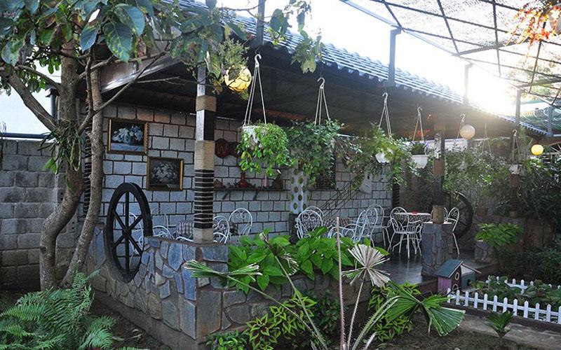 Wind Coffee Bảo Lộc