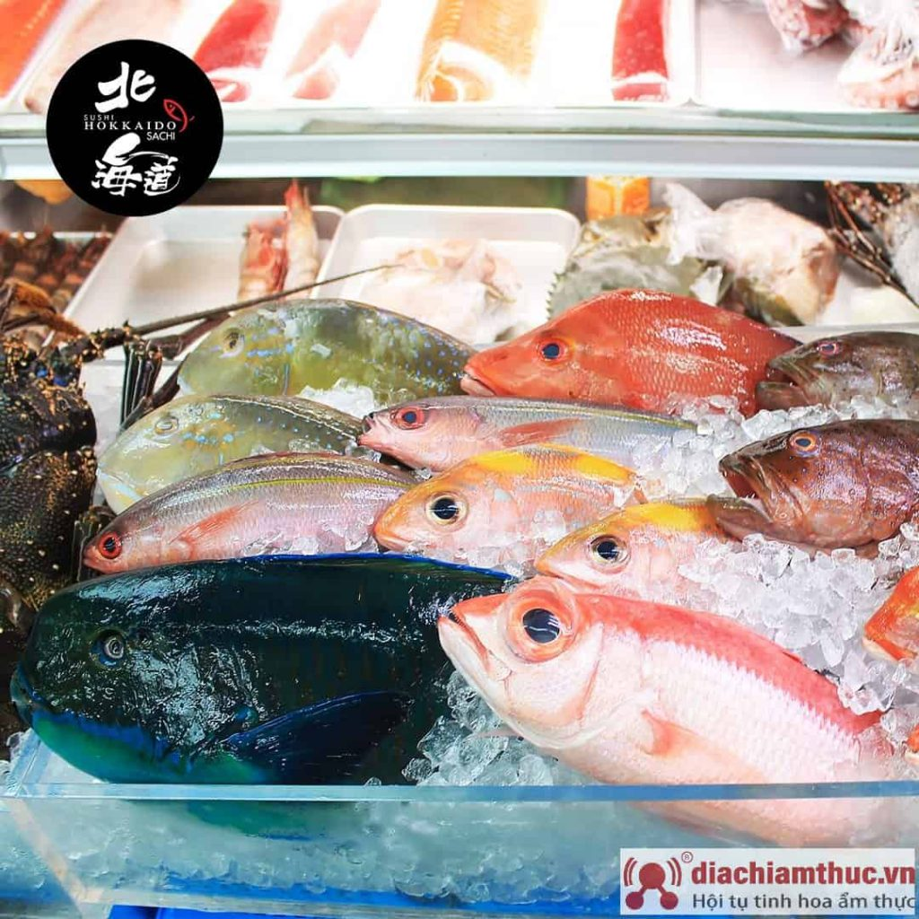 các loại cá tươi sống ở hokkaido