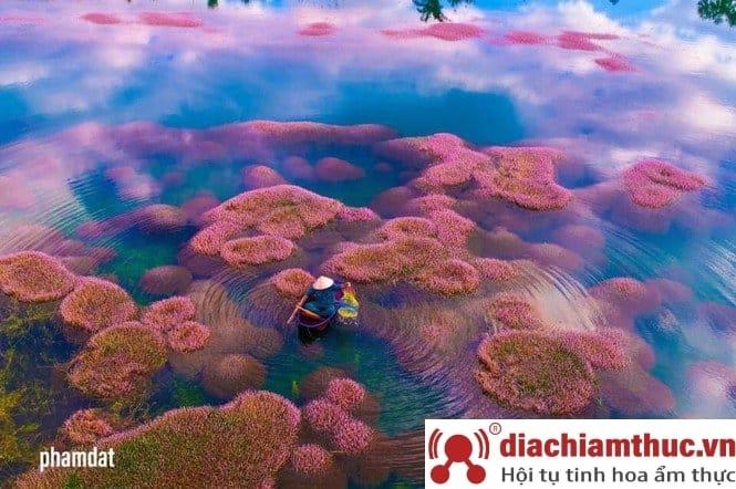 Hồ nhân tạo Tảo Hồng