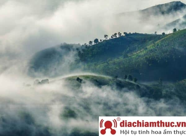 Núi Đại Bình Lâm Đồng