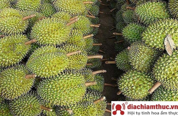 Sầu riêng Khánh Sơn Nha Trang