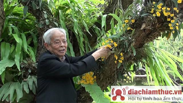 Giáo xư ngành hoa lan rapee sagarik