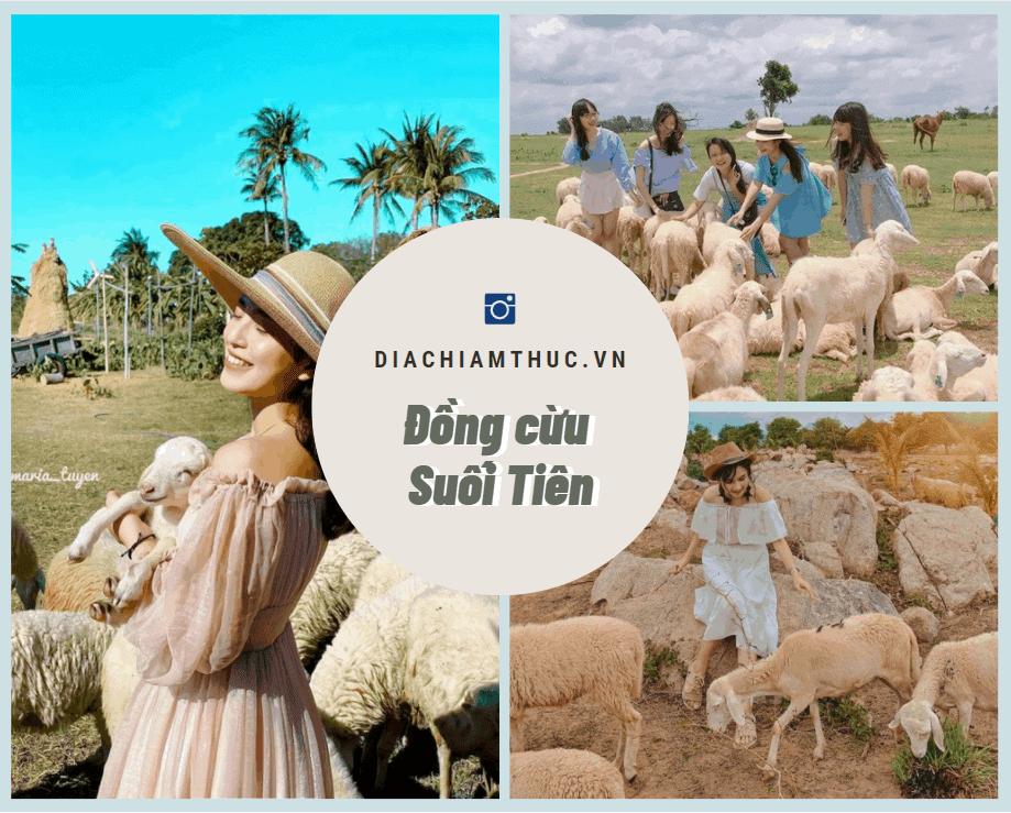 Đồng cừu Suối Tiên