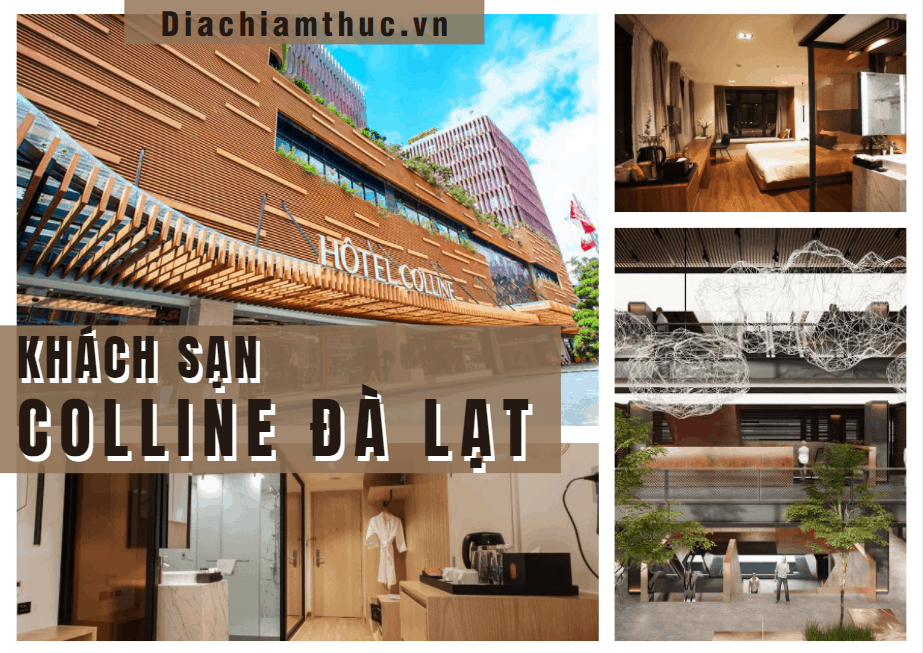 Hotel Colline Đà Lạt