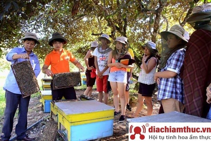 Thăm trại ong Đảo Ngọc
