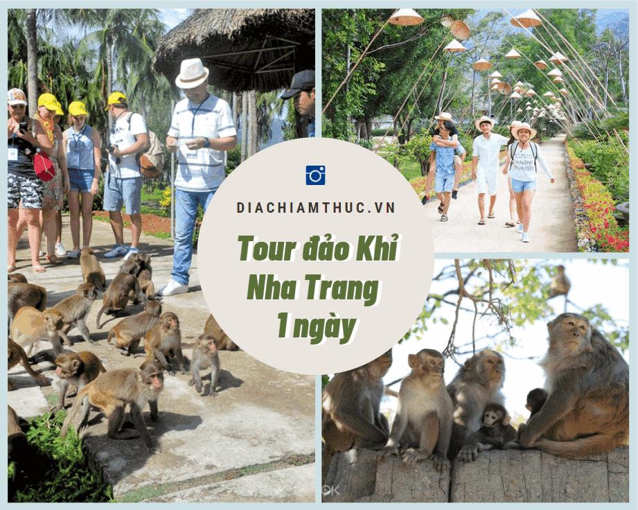 Tour đảo Khỉ Nha Trang 1 ngày