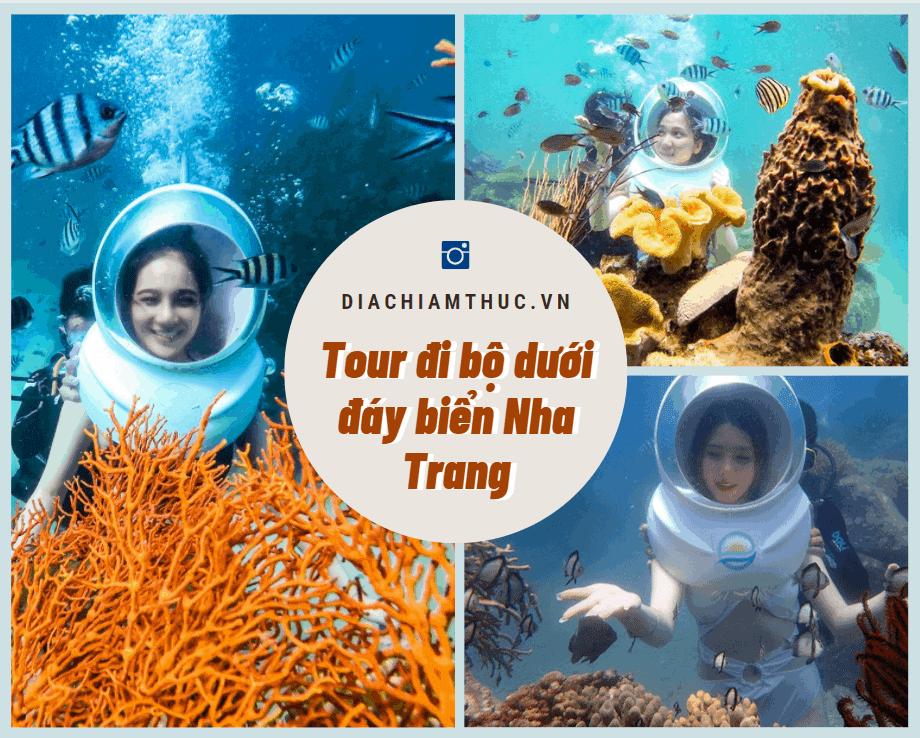 Tour đi bộ dưới đáy biển Nha Trang