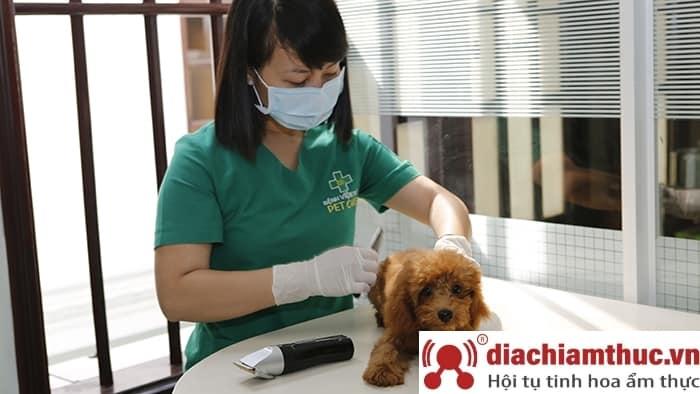 Bệnh Viện Thú Y Pet Care SG