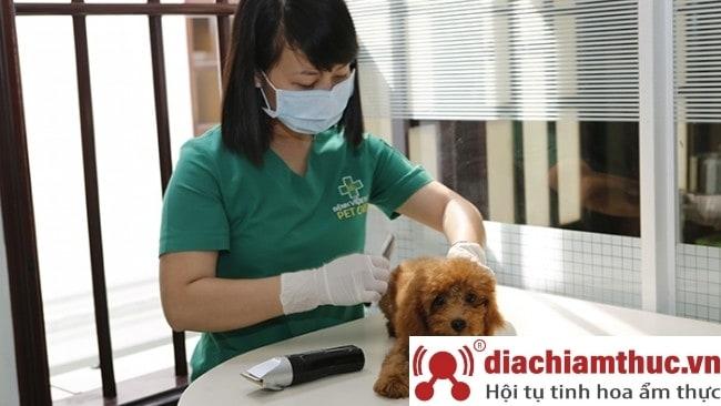 Phòng khám thú y uy tín nhất gần đây ở quận 3