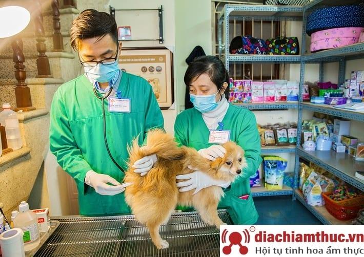 Phòng khám thú y uy tín nhất gần đây ở quận Bình Thạnh