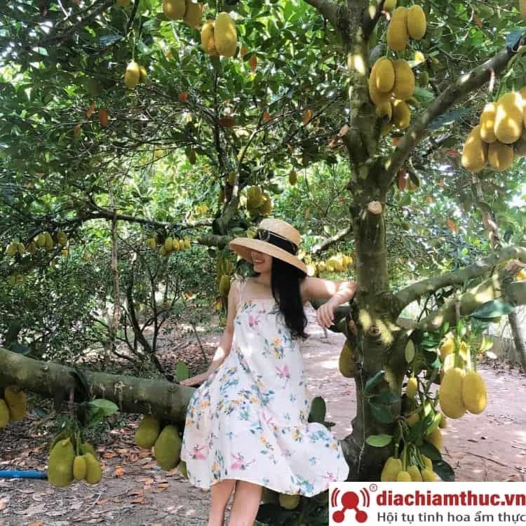 Vườn trái cây Gò Chùa