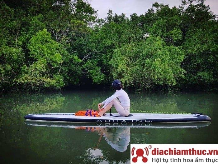 Chèo thuyền ngắm rừng ngập mặn